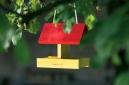 Mangeoire petits oiseaux