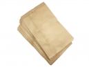 10 sacs industriel aspirateur FIORENTINI DORSAL (aspi ramoneur)